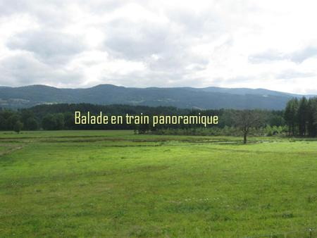 Balade en train panoramique