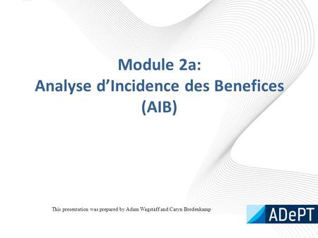 Module 2a: Analyse d'Incidence des Benefices (AIB) This presentation was prepared by Adam Wagstaff and Caryn Bredenkamp.