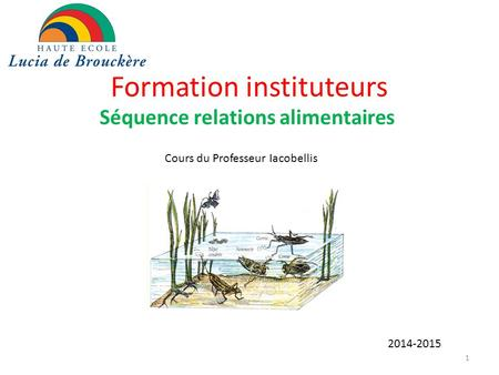 Formation instituteurs