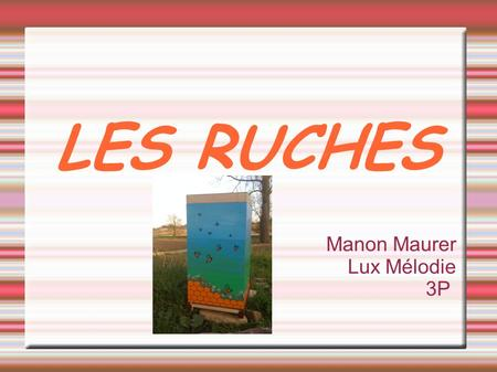LES RUCHES Manon Maurer Lux Mélodie 3P. SOMMAIRE  Introduction  La Ruche Traditionnelle ●Les ruches en paille ●Les ruches en tuile ou ruches troncs.