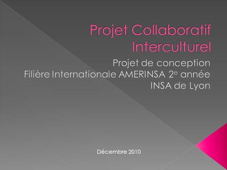 Projet Collaboratif Interculturel
