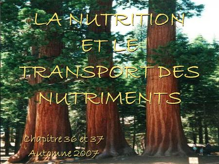 LA NUTRITION ET LE TRANSPORT DES NUTRIMENTS