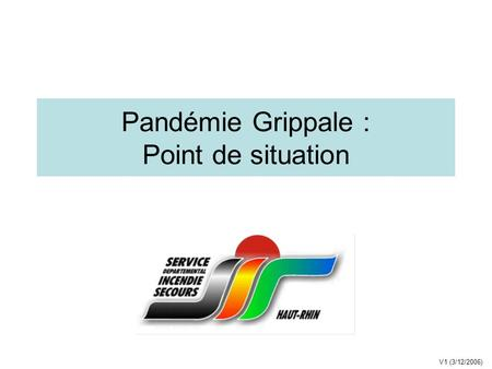 Pandémie Grippale : Point de situation V1 (3/12/2006)