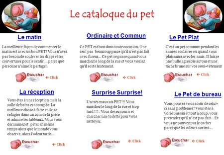Le cataloque du pet Ordinaire et Commun Le matin Le Pet Plat