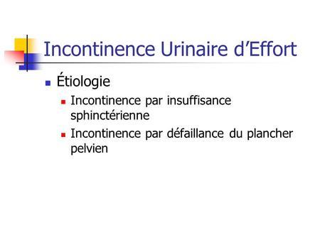 incontinence urinaire de l adulte ppt t l charger. Black Bedroom Furniture Sets. Home Design Ideas