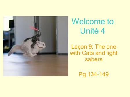 Welcome to Unité 4 Leçon 9: The one with Cats and light sabers Pg 134-149.