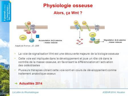 La Lettre du Rhumatologue Physiologie osseuse Alors, ça Wnt ? ASBMR 2014, Houston Accumulation de β-catenine ↑ masse osseuse Dégradation de β-catenine.