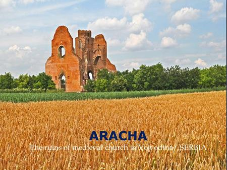 ARACHA The ruins of medieval church in Vojvodina/ SERBIA.