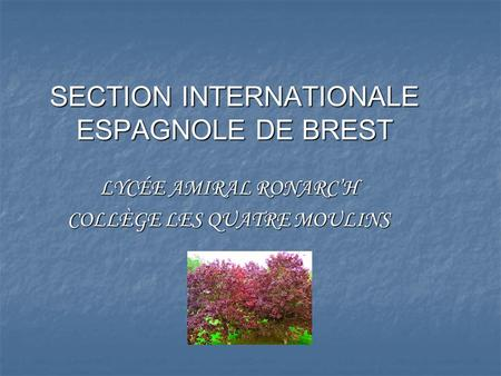 SECTION INTERNATIONALE ESPAGNOLE DE BREST