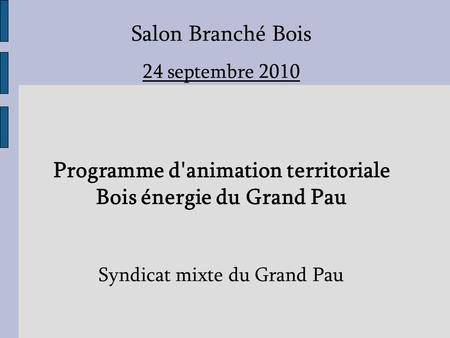 Salon Branché Bois 24 septembre 2010 Programme d'animation territoriale Bois énergie du Grand Pau Syndicat mixte du Grand Pau.