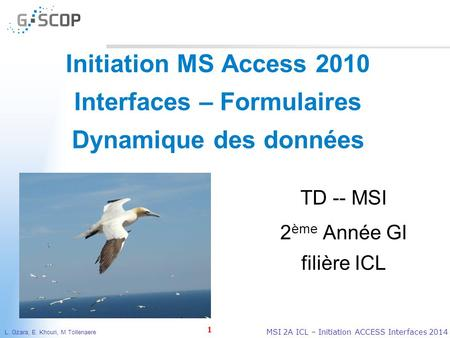 L. Gzara, E. Khouri, M Tollenaere 1 MSI 2A ICL – Initiation ACCESS Interfaces 2014 Initiation MS Access 2010 Interfaces – Formulaires Dynamique des données.