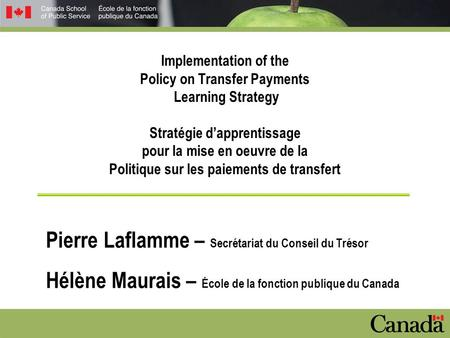 Implementation of the Policy on Transfer Payments Learning Strategy Stratégie d'apprentissage pour la mise en oeuvre de la Politique sur les paiements.