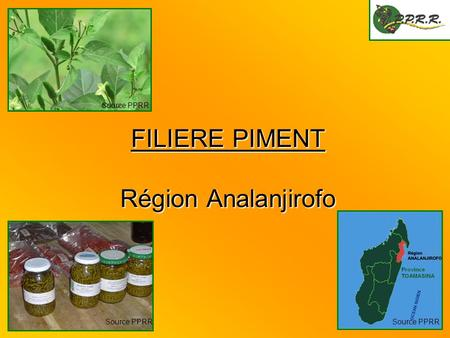 FILIERE PIMENT Région Analanjirofo