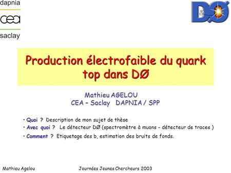 Production électrofaible du quark top dans DØ