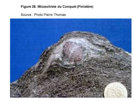 Figure 28. Micaschiste du Conquet (Finistère) Source : Photo Pierre Thomas.
