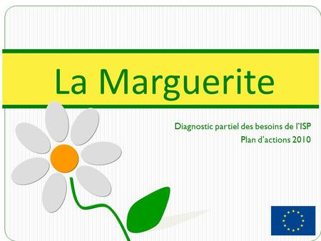 Diagnostic partiel des besoins de l'ISP Plan d'actions 2010 La Marguerite.