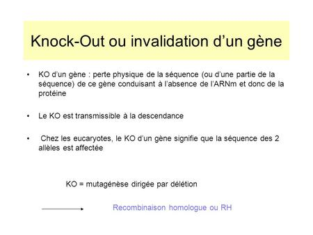 Knock-Out ou invalidation d'un gène
