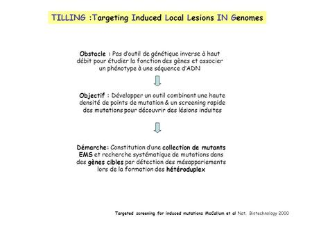 TILLING :Targeting Induced Local Lesions IN Genomes