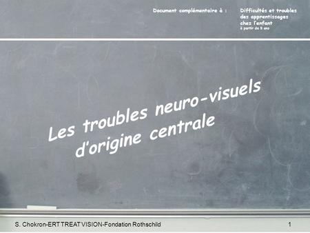 S. Chokron-ERT TREAT VISION-Fondation Rothschild