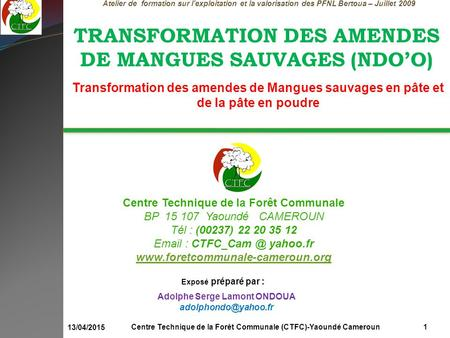 TRANSFORMATION DES AMENDES DE MANGUES SAUVAGES (NDO'O)