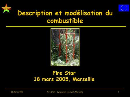 Fire Star 18 Mars 2005Fire Star - Symposium conclusif, Marseille 1 Description et modélisation du combustible Fire Star 18 mars 2005, Marseille.