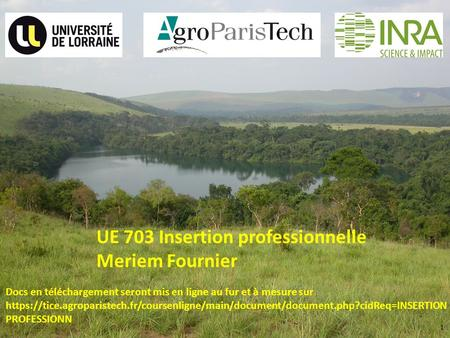 1 UE 703 Insertion professionnelle Meriem Fournier Docs en téléchargement seront mis en ligne au fur et à mesure sur https://tice.agroparistech.fr/coursenligne/main/document/document.php?cidReq=INSERTION.