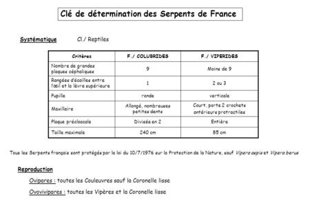 Clé de détermination des Serpents de France