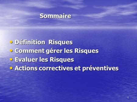 1 Sommaire Sommaire Définition Risques Définition Risques Comment gérer les Risques Comment gérer les Risques Evaluer les Risques Evaluer les Risques Actions.