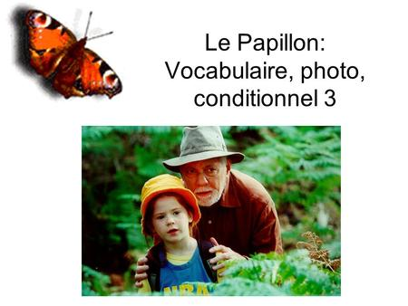 Le Papillon: Vocabulaire, photo, conditionnel 3. Animaux L'oiseauLa chrysalide La chenille.