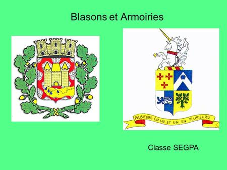 Blasons et Armoiries Classe SEGPA.