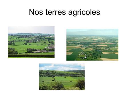 Nos terres agricoles. Occupation du sol en Wallonie.