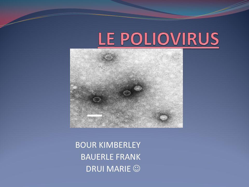 Agent responsable: Virus A.R.N (Acide Ribonucléique) du genre des entérovirus (famille des Picornaviridae : Ce sont des virus de petite taille (20 à 30 nm)), responsable de la poliomyélite antérieure aiguë.