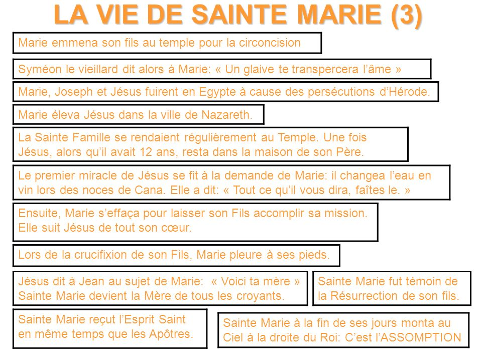 LA VIE DE SAINTE MARIE (3)