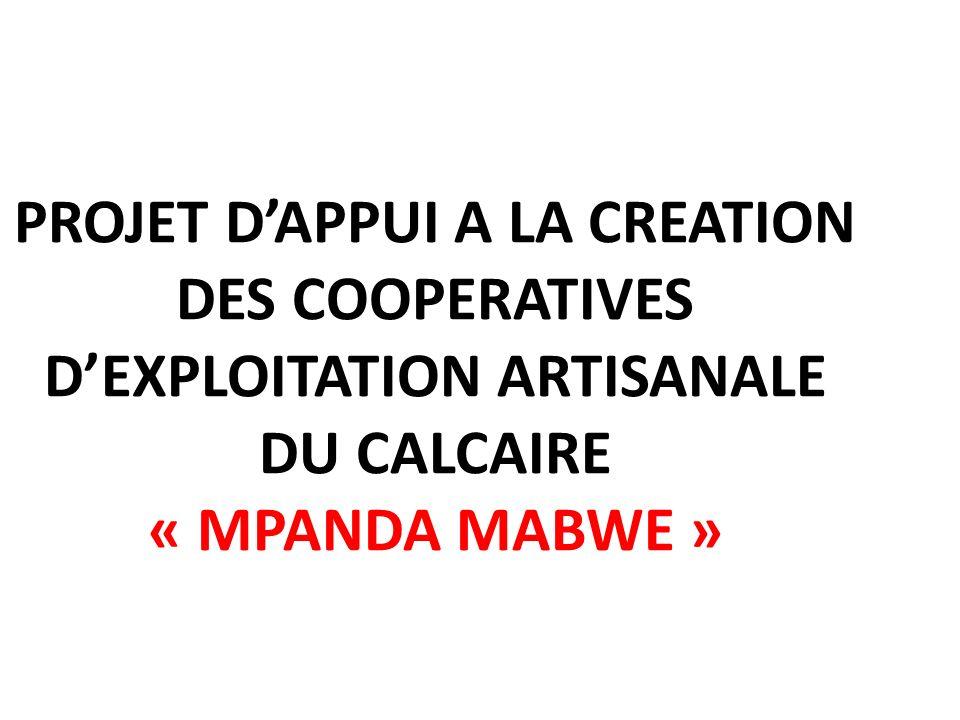 PROJET DAPPUI A LA CREATION DES COOPERATIVES DEXPLOITATION ARTISANALE DU CALCAIRE « MPANDA MABWE »