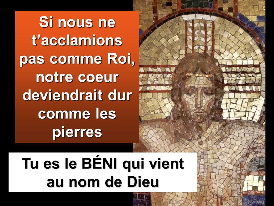 Tu es le BÉNI qui vient au nom de Dieu Si nous ne tacclamions pas comme Roi, notre coeur deviendrait dur comme les pierres