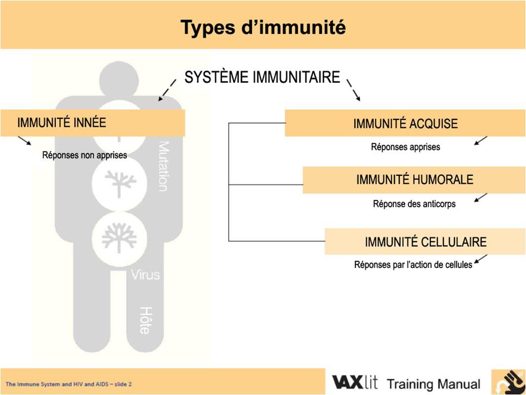 La réponse immunitaire Explication : Un pathogène entre dans le corps Des parties du système immunitaire le « ramassent » Des morceaux du pathogène sont présentés à dautres intervenants immunitaires Le système immunitaire lutte contre le pathogène Lien entre ce concept et le VIH : Le VIH est capable déviter la réponse immunitaire Il fait plusieurs copies de lui-même et se transforme (mute) pour être non reconnaissable par le système immunitaire Il tue des cellules immunitaires importantes pour la défense du corps contre lui Il est un défi pour le développement de vaccins