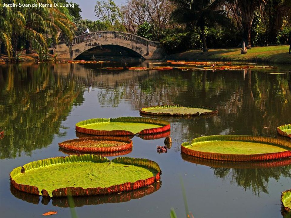 Jardin-Suan de Rama IX Luang