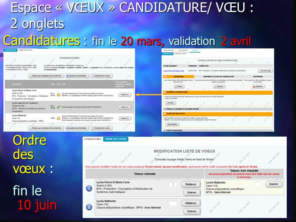 Espace « VŒUX » onglet CANDIDATURE : vérifier la réception des dossiers Dossier reçu et complet Dossier incomplet Information non saisie Dossier électronique validé : pas de dossier à envoyer.