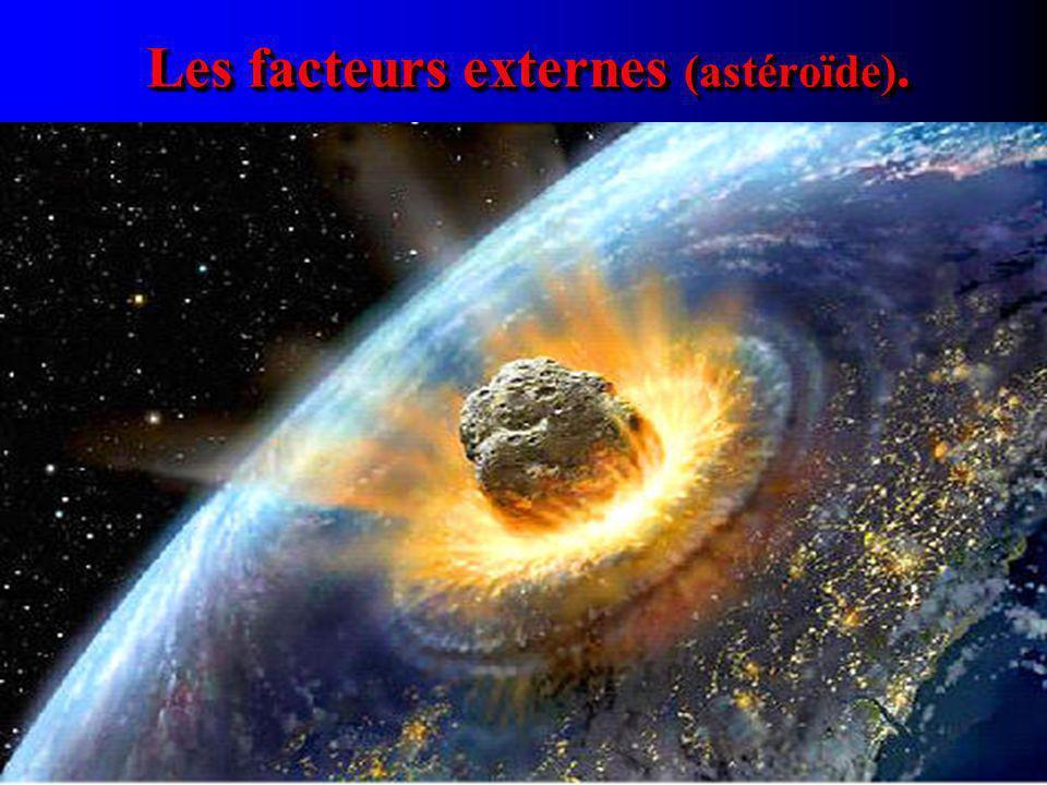 Les facteurs externes (astéroïde).