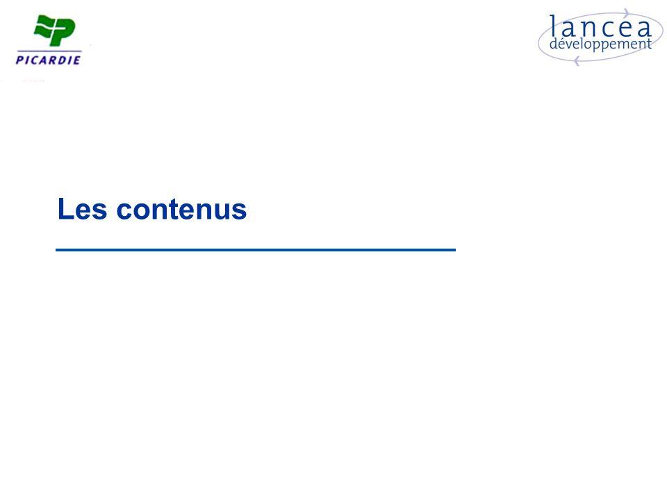 Des sites peu traduits Seuls 42% des acteurs proposent une ou plusieurs version(s) étrangère(s) de leur site En Midi-Pyrénées en 2003, 58% des acteurs possédaient un site en langue étrangère En Pays de la Loire en 2005, 43% des sites étaient traduits ; ils étaient 50% à la Réunion en 2005 Si 130 sites sont traduits en anglais, les traductions dans dautres langues restent à des niveaux très confidentiels Les sites des acteurs privés sont bien plus traduits que les sites des acteurs publics Près dun tiers des sites des acteurs accueillant plus de 50% de clientèle étrangère nest pas traduit .