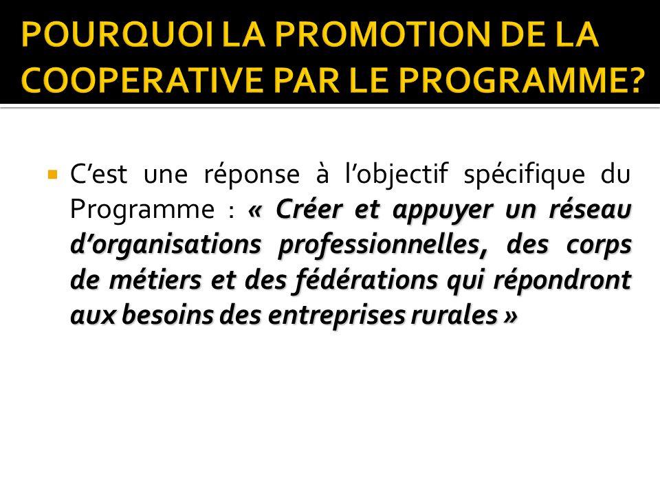 Coopérative (99-004 du 21 avril 1999) : forme de structuration idéale pour soutenir le business des MER Activités à but lucratif Groupement et association (60-133) ne pouvant pas réaliser des activités générant des profits