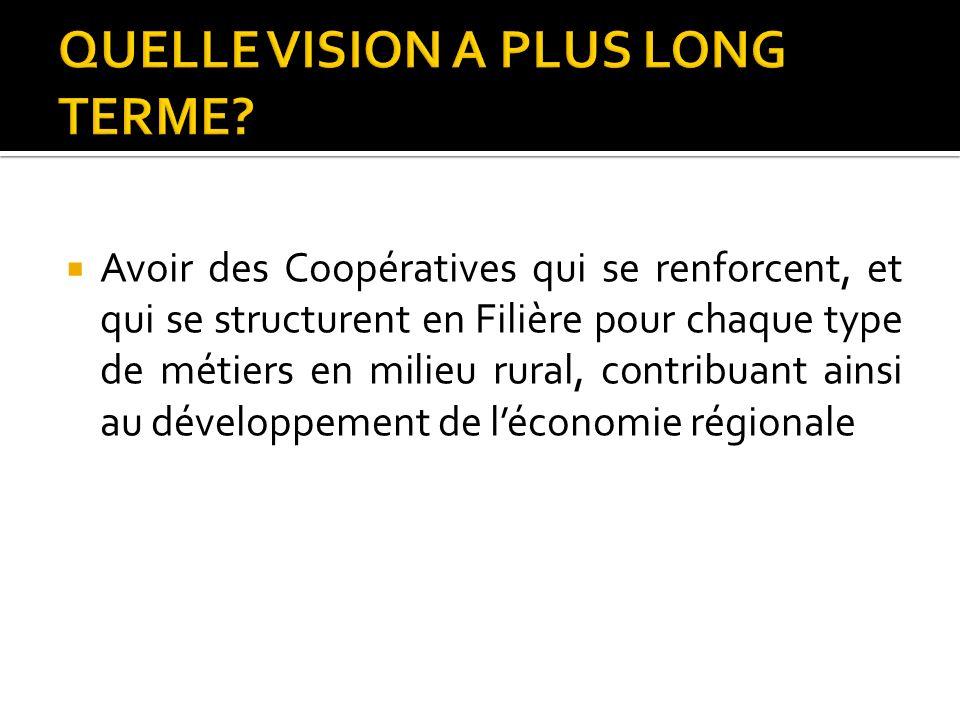 Faire de la coopérative un lieu dapprentissage permanent et de pratique continue Appuyer les coopératives existantes ou nouvellement créées à être opérationnelles