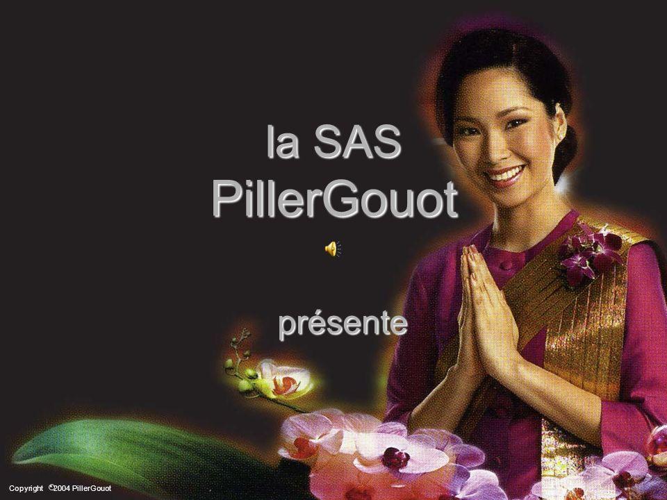 La SAS PillerGouot présente Air Conditioners PILLER FRANCE Qualité & Service