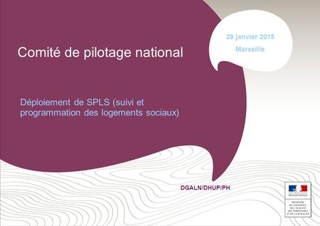 Comité de pilotage national