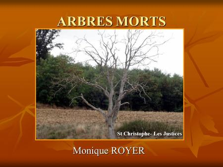 ARBRES MORTS Monique ROYER St Christophe- Les Justices.