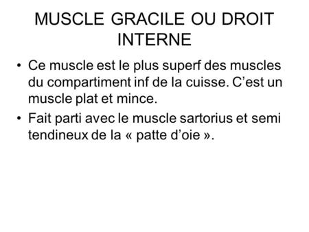 MUSCLE GRACILE OU DROIT INTERNE