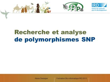 Formation Bio-informatique IRD 2013