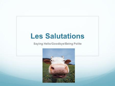 Les Salutations Saying Hello/Goodbye/Being Polite.