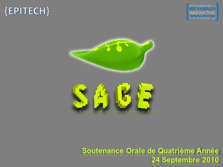 SAGE is a JavaScript Framework for embedding rich 3D content in a web page. –Uses Hardware Acceleration. –Runs on majors Browsers and Operating Systems.