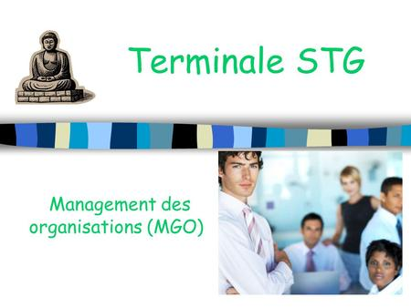 Management des organisations (MGO)